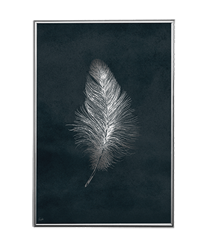 SILVER FEATHER NIGHT