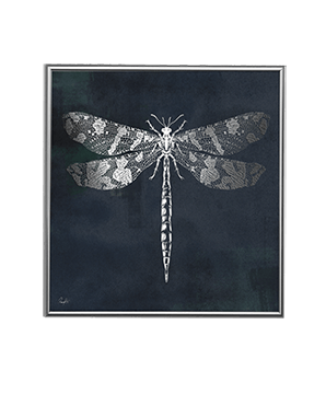 SILVER DRAGONFLY NIGHT_SQ