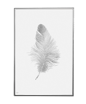 SILVER FEATHER